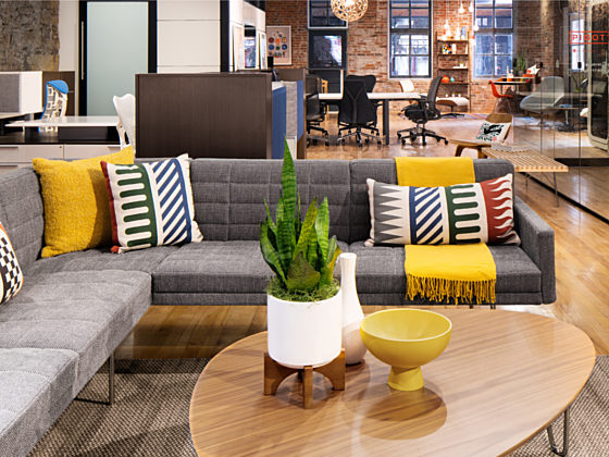 Modern office space featuring eclectic Maharam finishes, contemporary sofa, and greenery.